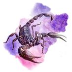https://www.katleen-voyance.com/img/astrologie/hindou/signe-hindou/astro-hindou-vrishchika-scorpion-noir.png